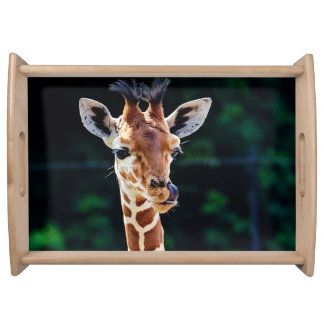 sweet young giraffe serving tray