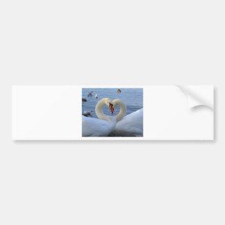 Sweetheart swans bumper sticker