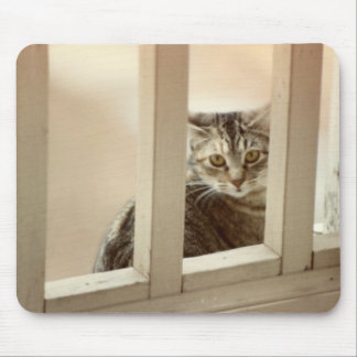 Sweetie Looks Thru Balcony Railing Mouse Mats