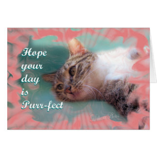 SweetiePie-customize-any occasion Cards