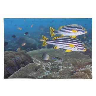 Sweetlip Fish Placemat