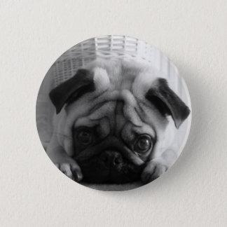 SweetPea Pugs 6 Cm Round Badge