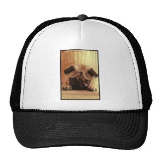 SweetPea Pugs Cap