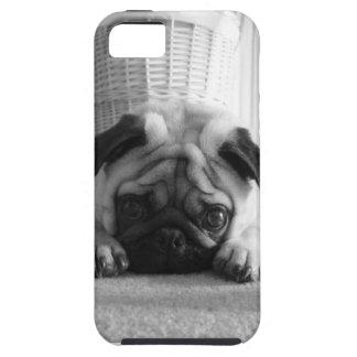 SweetPea Pugs iPhone 5 Cover