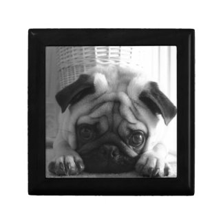 SweetPea Pugs Small Square Gift Box