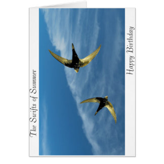 Swift Bird Image for birthday-greeting-card Card