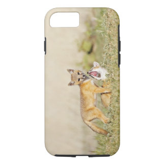 Swift Fox (Vulpes macrotis) young at den burrow, 4 iPhone 8/7 Case