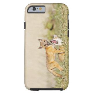 Swift Fox (Vulpes macrotis) young at den burrow, 4 Tough iPhone 6 Case