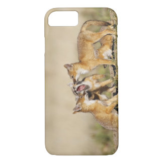 Swift Fox (Vulpes macrotis) young at den burrow, iPhone 8/7 Case