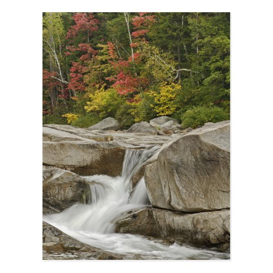 Swift River cascading through rocks, White Postcard