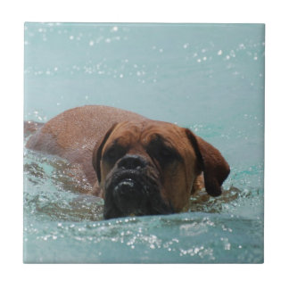 Swimming Bordeaux Small Square Tile