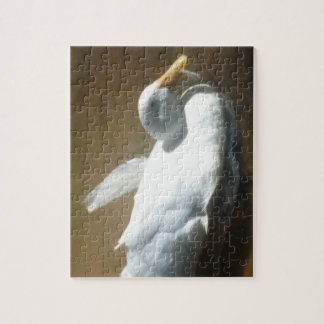 Swimming Duck Jigsaw Puzzle