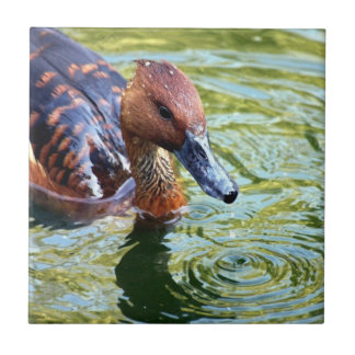 Swimming Duck Small Square Tile