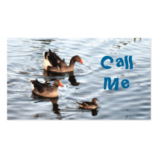 Swimming Ducks Business Card