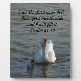 Swimming Geese with Open Mouths Display Plaques