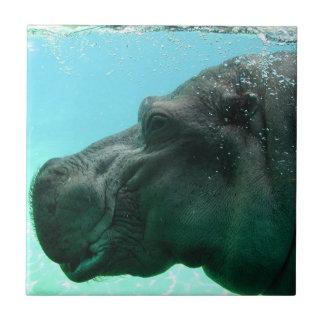 Swimming Hippo Tile