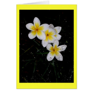 Swimming in the Rain Mulit Products Greeting Card