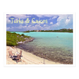 """SWIMMING IN TURKS & CAICOS"" POSTCARD"