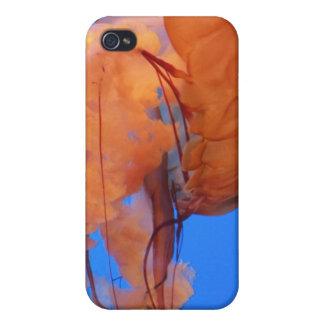 Swimming Jellyfish  iPhone 4 Covers