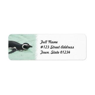 Swimming Penguin Return Address Label