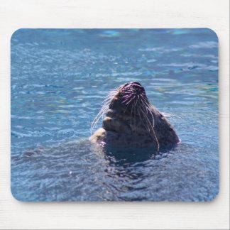 Swimming Sea Lion Mouse Mat