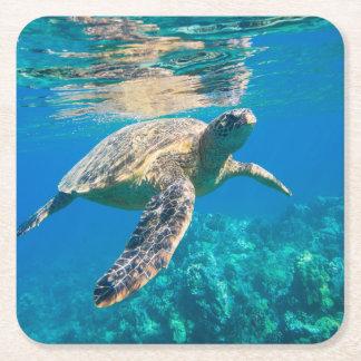 Swimming Sea Turtle Square Paper Coaster