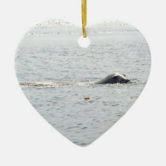 Swimming Seal Ceramic Heart Decoration