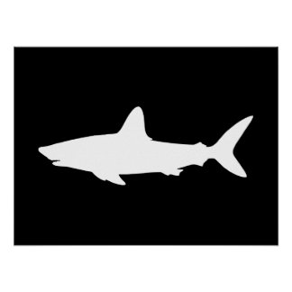 Swimming Shark Poster