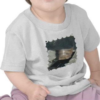 Swimming Stingray Baby T-Shirt