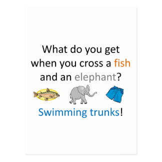 Swimming Trunks Joke Postcard