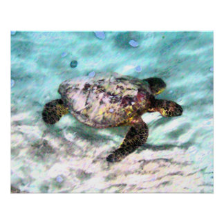 Swimming Turtle Canvas Prints Poster