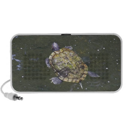 Swimming turtle in Singapore Botanical Garden Speaker