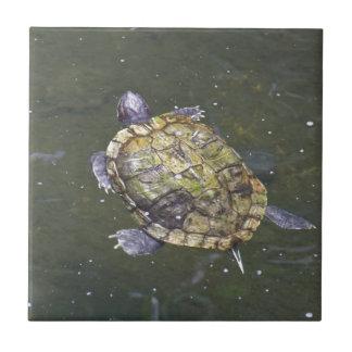 Swimming turtle in Singapore Botanical Garden Ceramic Tile