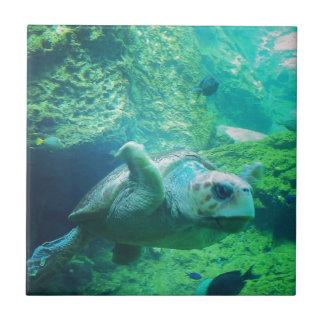Swimming Turtle Tiles