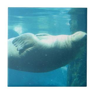 Swimming Walrus Tiles