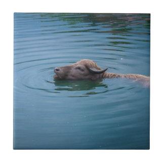 Swimming Water Buffalo Small Square Tile