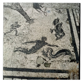 Swimming with the Dolphins, from the Frigidarium o Large Square Tile