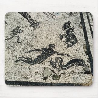 Swimming with the Dolphins, from the Frigidarium o Mouse Mat