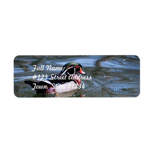 Swimming Wood Duck