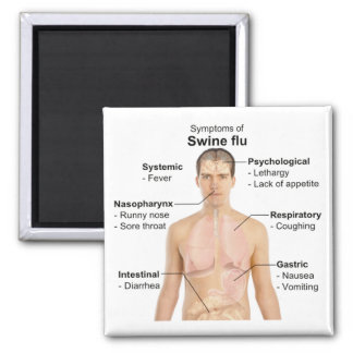 Swine Flu Refrigerator Magnet