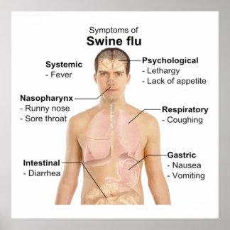 Swine Flu Posters