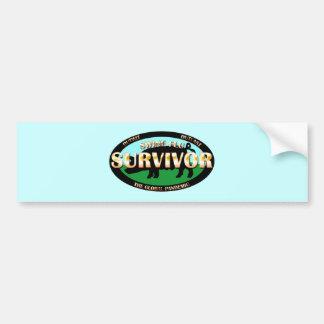 Swine Flu Survivor Bumper Stickers
