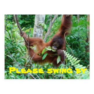 Swing By party invitations Post Card