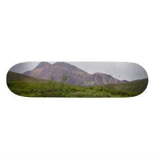 Swirled Beauty In Denali 21.6 Cm Skateboard Deck