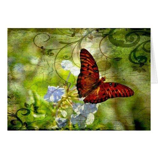 Swirly Butterfly Greeting Card