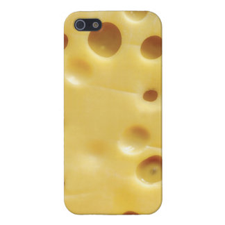 swiss cheese iPhone 5/5S covers