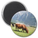 Swiss Cow 6 Cm Round Magnet