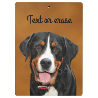 Swiss Mountain Dog Clipboard