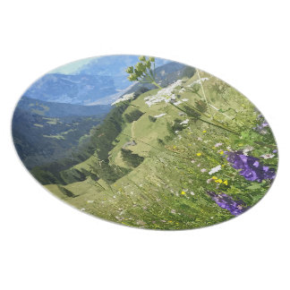 Swiss Plate - Alpine meadow
