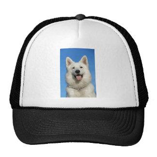 Swiss Shepherd Dog Cap